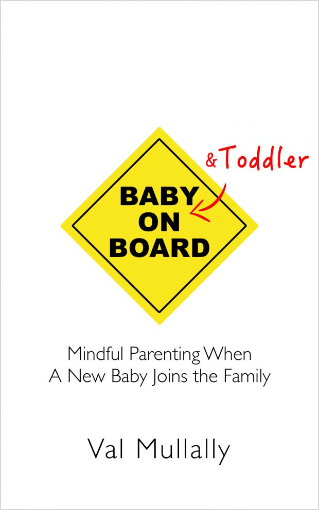 Baby and Toddler On Board e-book