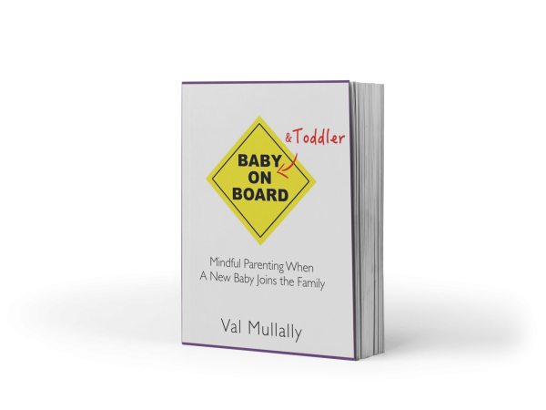 Baby and Toddler on Board - freestanding book image