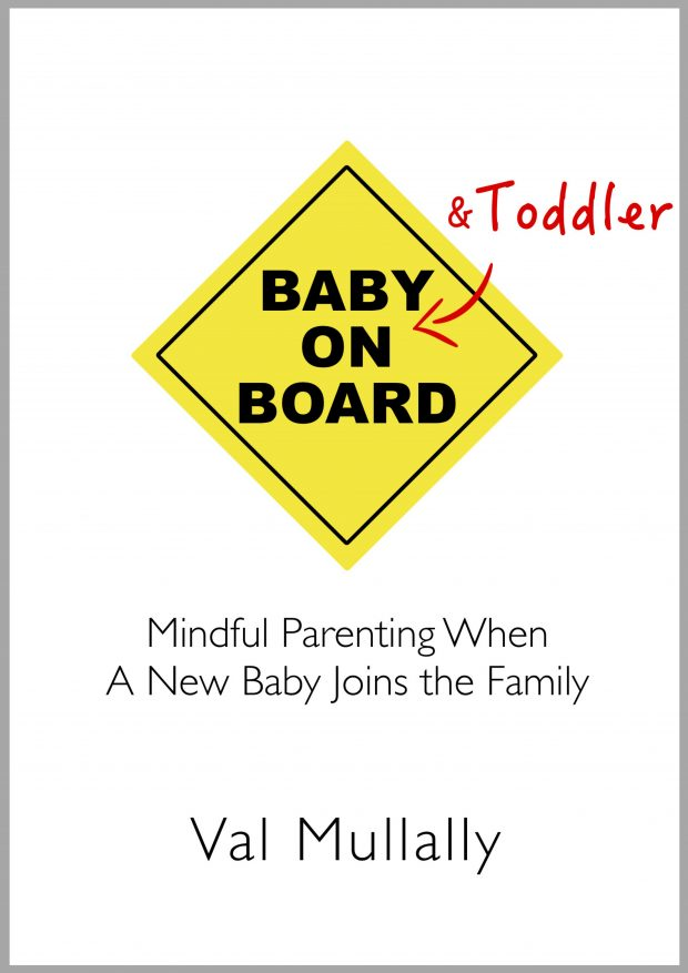 Baby and Toddler On Board - book cover